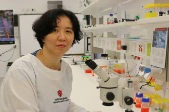 Associate Professor Michelle Hill is the head of QIMR Berghofer's Precision and Systems Biomedicine Group.
