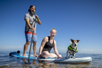 Ashley Thomas and her partner, Matt Casey, swim and paddleboard with their terrier Oscar, who took swimming lessons after an injury last year.