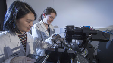 PhD scholar Sherry He and Dr Samantha Montague, from the Australian National University, work with their diagnostic device that reveals the formation of blood clots in patients.