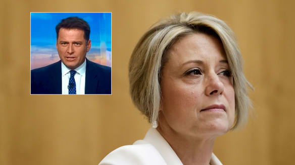 Senator questions Stefanovic's 'conflict of interests' in promoting foundation
