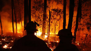 We need to invest in more research about how to fight and prevent bushfires.