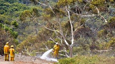 Firefighting crews at Hepburn Springs.