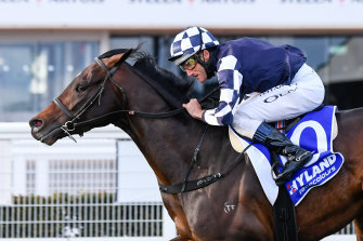 Russian Camelot is nearing a return to the race track.