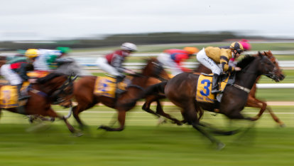 'Precautionary measure': Racing NSW calls off Warwick Farm races because of COVID-19 cluster