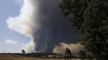 Hot, dry westerly winds created extreme bushfire conditions in south-east Australia this week.