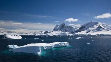 A tabular iceberg floating within Paradise Harbour, Antarctica, in the Southern Ocean.