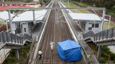 A man was hit and killed by a train at Fairy Meadow train station.