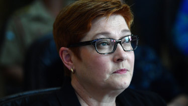 Marise Payne expressed Australia's concerns to the Turkish Foreign Minister on Sunday.
