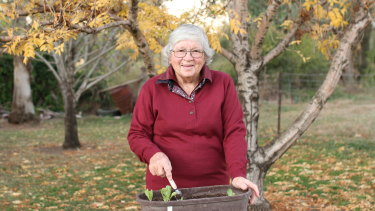 Mary Gaston is hoping new remote monitoring devices being used by the University of New England can help her stay in her small town of Yetman.