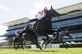 All Time Legend wins at Randwick last start with Kerrin McEvoy in the saddle.