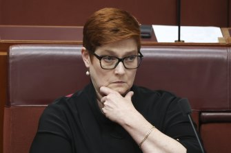 """Minister for Women Marise Payne said sexual harassment was a """"whole of Australia workplace issue""""."""