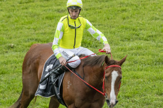 Nash Rawiller has to see a sports psychologist after another careless riding suspension.
