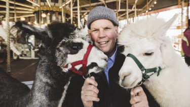 Nils Lantzke set up Therapy Alpacas in Canberra 15 years ago.