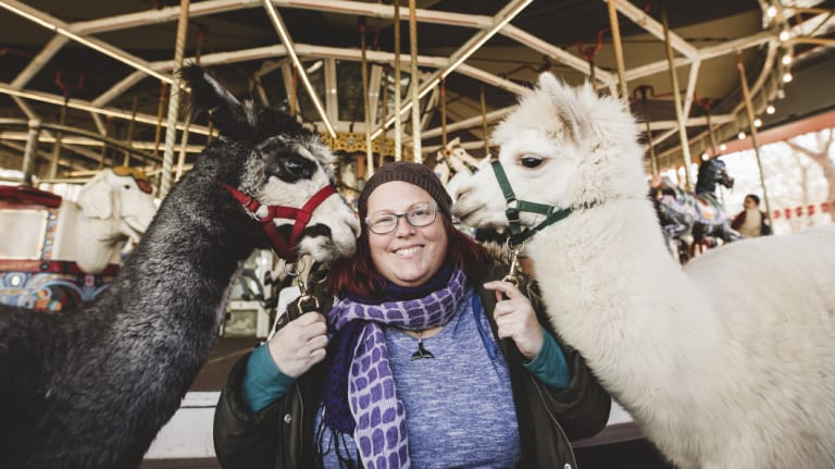 Alpacas Hercules and Mimosa with Therapy Alpacas co-founder Stephanie Dean.