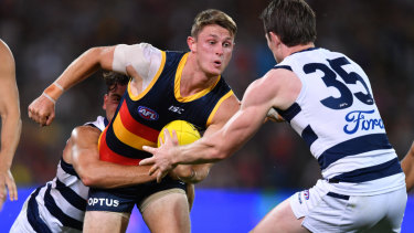 Committed: New Geelong recruit Luke Dahlhaus wraps up Adelaide's Matt Crouch in a tackle.