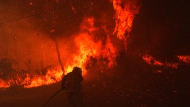 NSW RFS face scorching heat and embers battling a bushfire in Llandilo.