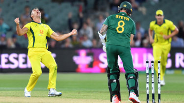 Turning things around: Marcus Stoinis reacts after dismissing Dale Steyn. It was Australia's first ODI win since January.