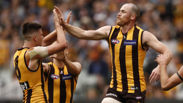 Jarryd Roughead is back for Hawthorn's clash with the Swans.