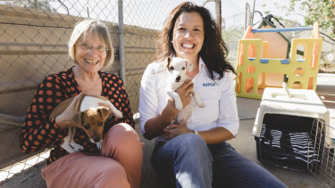 ACT Greens transport spokesperson Caroline Le Couteur, and RSPCA ACT CEO Tammy Ven Dange are calling for pets to be allowed on Canberra's public buses.
