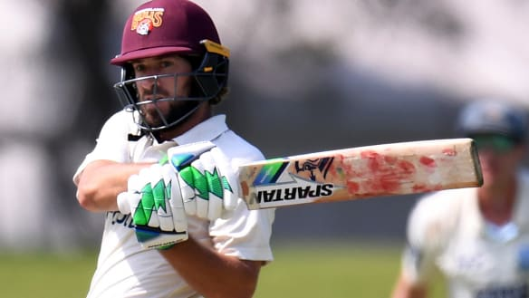 Burns saves Queensland Bulls in Shield against NSW Blues