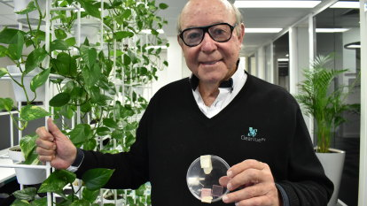'A lot more AI applications': Australian solar glass company set to revolutionise global construction