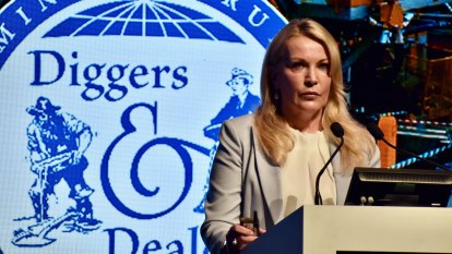 'That's a female perspective': FMG boss talks gender imbalance and skimpies at Diggers and Dealers
