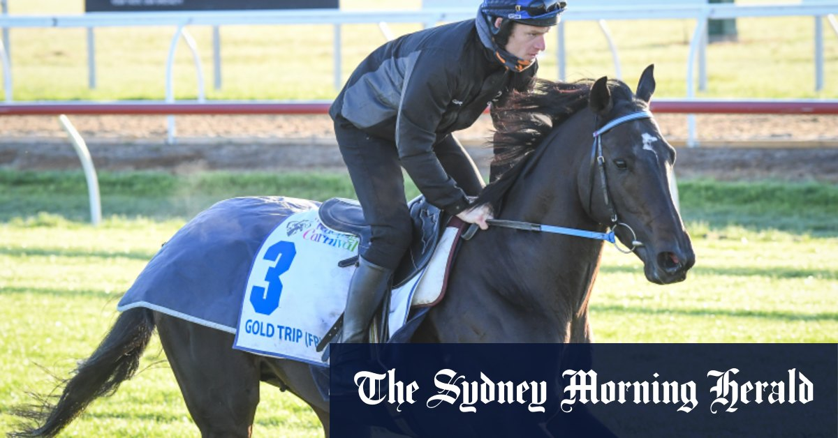 Gold Trip to be scratched from Cox Plate if he doesn't improve, Callsign Mav passed fit