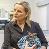 "Environment Minister Sussan Ley said the $150m would do the ""heavy lifting"" for wildlife recovery."