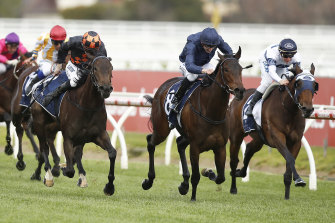 Three-year-old filly Gamay won the group 3 Ethereal Stakes last month.