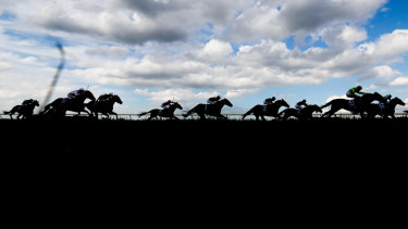 Race-by-race tips and preview for Wagga on Thursday