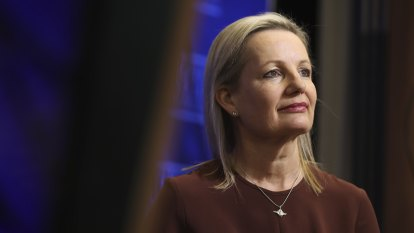 'Risky move': Minister approves coal mine despite climate legal challenge