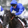 On the rise: Avilius charges away in the Ranvet Stakes and could back-up in the Tancred Stakes on Saturday