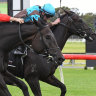 Victorian racing on brink: Officials sweating on COVID-19 test result