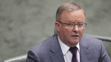 Labor leader Anthony Albanese is playing down tensions within his party over its position on coal .