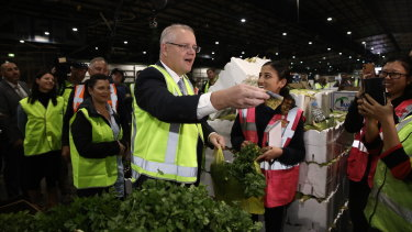 Prime Minister Scott Morrison, wife Jenny and Federal Liberal Candidate for Reid Fiona Martin buy coriander at the Sydney Markets in Homebush.