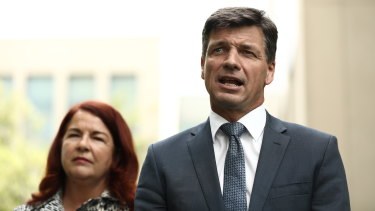 Energy Minister Angus Taylor, with Environment Minister Melissa Price, said ute-driving tradesmen would be left stranded by Labor's policy.
