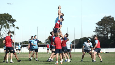 The Waratahs are gearing up for a hit-and-run mission to Queensland on Friday.