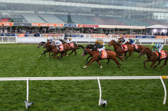 Sierra Sue, with Daniel Moor in the saddle, wins the Sir Rupert Clarke Stakes at Caulfield in front of an empty grandstand.