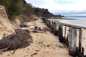 Erosion at Cowes East