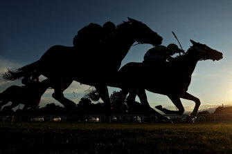 A seven-race card at Albury will kick off the week.