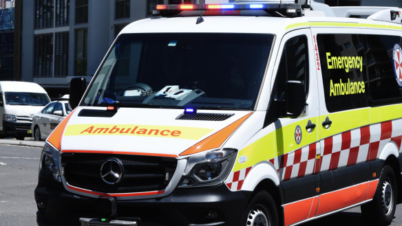 Irish nationals charged with murder after alleged inner west assault