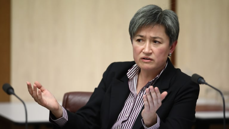 Senator Penny Wong questions AEC Commissioner Tom Rogers on Thursday.