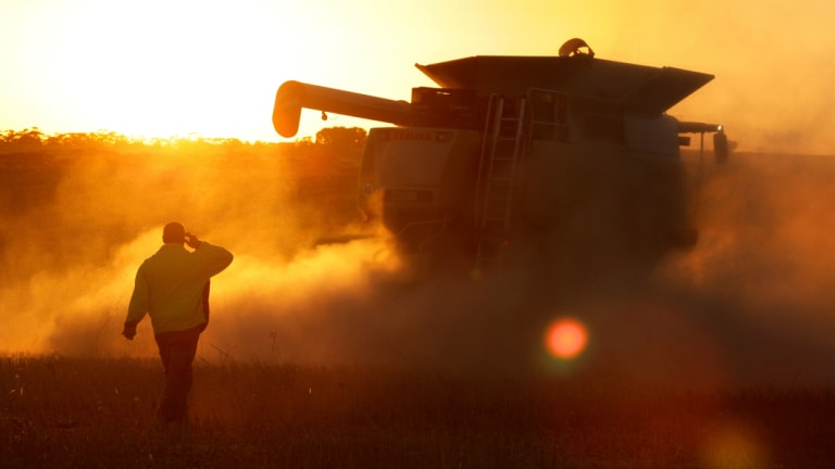 The drought will wipe millions of tonnes off crop production in eastern Australia.