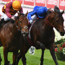 Protest dismissed: State Of Rest's Cox Plate triumph