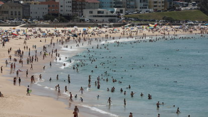 Parts of Sydney tip 40 degrees as heatwave descends across NSW