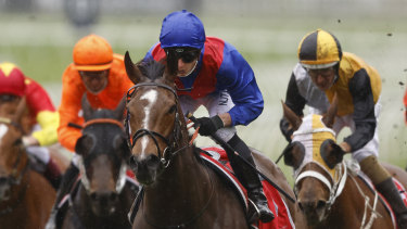 Cox Plate favourite Zaaki will have only four other horses to beat in the  group 1 Underwood Stakes at Sandown on Saturday.