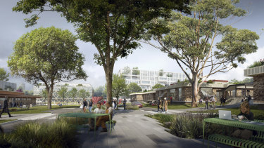 Greenery is a focus of the proposed plan for the new campus.