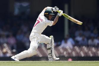 Australian captain Tim Paine has enjoyed strong recent form.