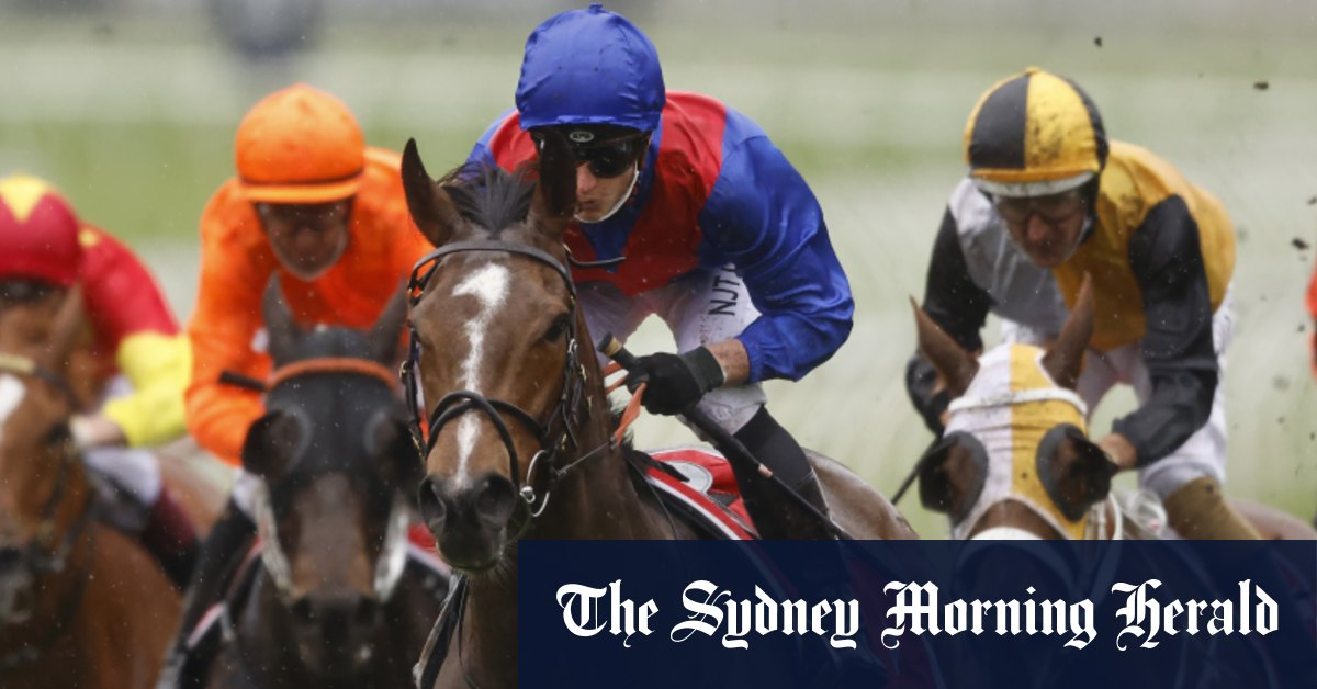 Zaaki at his best could dominate, Cox Plate says ratings expert