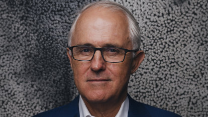 'Not intended or contemplated': Turnbull says foreign influence laws need review